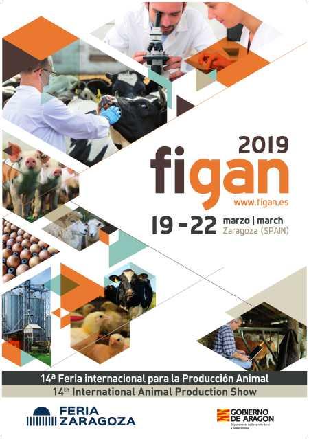 Plakat Figan 2019